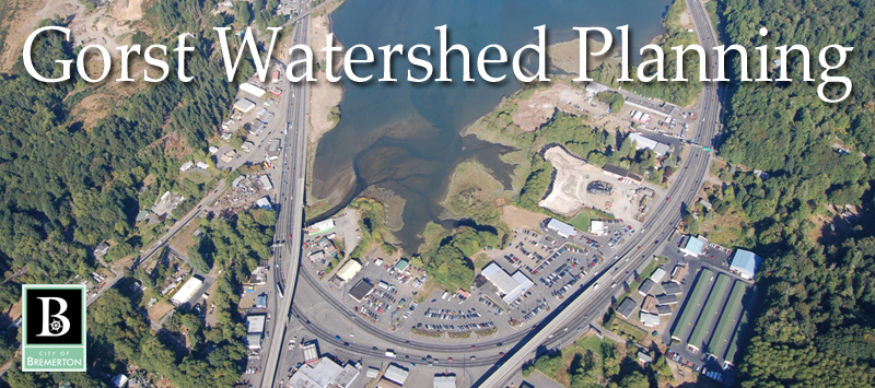 Gorst Watershed Planning